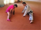 """Taekwon – Do """"The road of kicks and punches"""" or """"Hands & Feet System"""""""